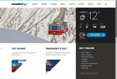 Snowbird-Webデザイン_001